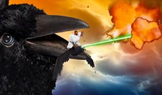 Eagle Lasers